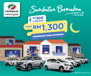 Perodua Meaningful Raya